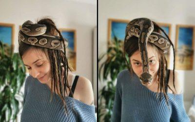 Peloco: Snake-Dreads - Welch wunderschöne Kopfbedeckung 🐍 meiner hübschen Kundin Claire.. Das farblich zu ihren Dreads abgestimmte Highlight am Kopf macht sie zu meiner persönlichen Medusa 😍