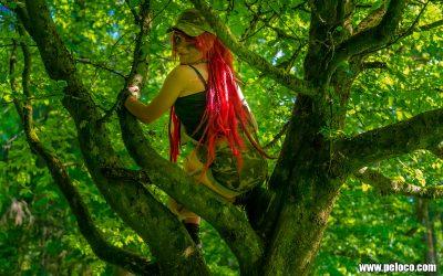 Fredy's Peloco Survivors: welcher bunte 'Vogel' sitzt den da mit ihrer roten Dreadmähne im Baum? (Copyright by: Manfred Voit)